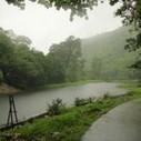Polo Retreat – Forest | Unusual Unexplored | Scoop.it
