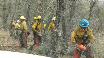 Monsoon activity slows Oak fire | Eastern Arizona Courier | CALS in the News | Scoop.it
