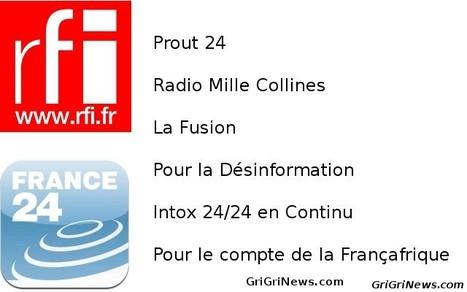 Désinformation et propagande des médias Français en Afrique | Actualités Afrique | Scoop.it