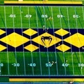 We found the most ridiculous high school football field | Sports Facility Management | Scoop.it