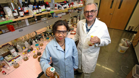 University of Arizona posts strong year for inventions and patents | Arizona Daily Star | CALS in the News | Scoop.it