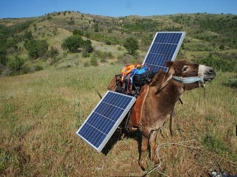 En Macédoine, un âne itinérant offre du courant électrique | Rue89 | e-society | Scoop.it