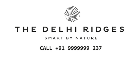 Book Luxury Home with Bharti Airtel Project Surajkund - The Delhi Ridges | nofrillsdeal | Scoop.it