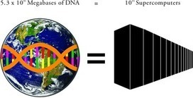 An Estimate of the Total DNA in the Biosphere | DigitAG& journal | Scoop.it