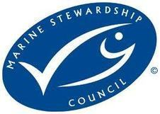 Japan welcomes first MSC certified independent restaurant - Aquaculture Directory   Aquaculture Directory   Scoop.it