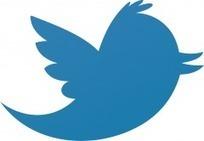 Twitter, le nouveau géant du réseau social | Nos années lycée | Etre responsable à l'ère du numérique | Scoop.it