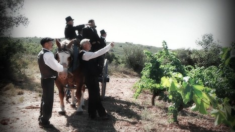» Sortie du film «Le midi viticole (2ème partie)» | Vins Sud de France | Scoop.it
