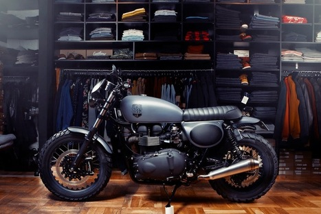 Renard T100 Scrambler | Cafe Racers | Scoop.it