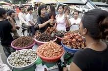 UN werben für mehr Insekten auf dem Speiseplan   Fundkiste   Scoop.it
