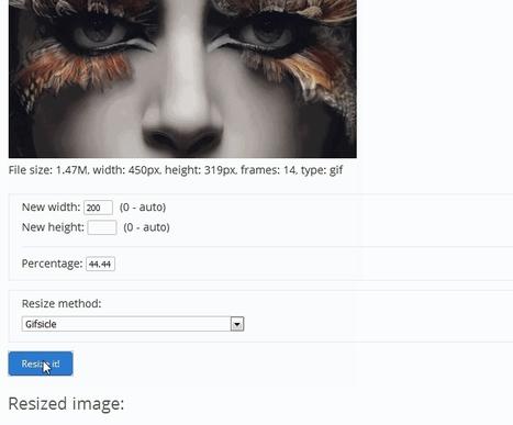 Une véritable boîte à outils online pour le traitement de vos images GIF animés | Chroniques libelluliennes | Scoop.it