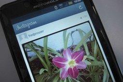 Instagram est-il en perte de vitesse ? | Quoi de news sur les réseaux sociaux ? | Scoop.it