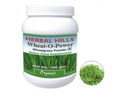 Buy Wheatgrass Powder | Wheat o powder | by Herbal Hills | Detoxification | Greenfood Supplement | Health Supplements | | Natural Health Products, Organic Food & Health Supplements | Scoop.it