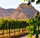 Five Under-the-Radar Wine Regions - TheWineBuzz | Pinot Post | Scoop.it