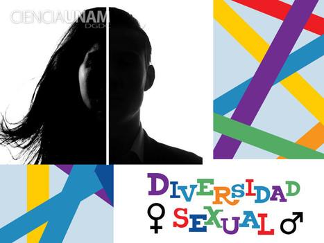Entender la transexualidad y demás expresiones de la diversidad sexual   Heterocity   Scoop.it