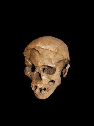 Una masacre hace 10.000 años habla sobre el origen de la guerra   Filosofía   Scoop.it