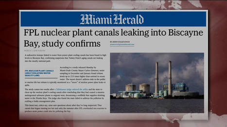 #Florida: #Nuclear Power Station Leaking #Radiation into Sea #USA #Fukushima | Messenger for mother Earth | Scoop.it