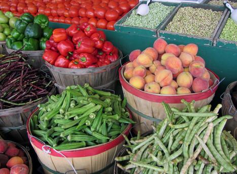 Could A Vegan Diet Help Prevent Cancer? | Vegan Logic | Scoop.it