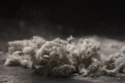 Environmental Illness - Toxic Chemicals in Our Environment   PTL Hygiene   Asbestos Surveys   Scoop.it
