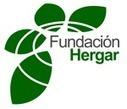 Convocatoria de Ayudas a Proyectos de Investigación 2012 | www.fundacionhergar.org | Psicología y salud | Scoop.it