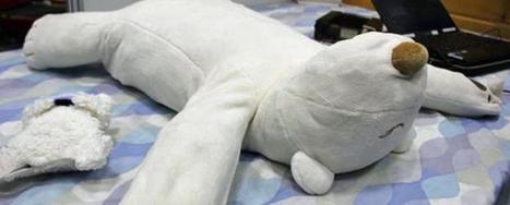 Almohada que te ayuda a dejar de roncar | mromecar | Scoop.it