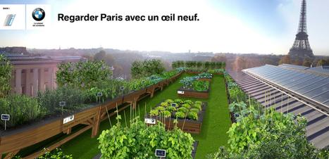 Le potager parisien de BMWi   Bien-être des salariés, great place to work   Scoop.it