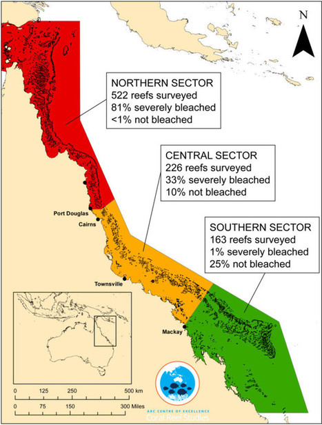 Great Barrier Reef bleaching stats are bad enough without media misreporting   Ecosystems at Risk   Scoop.it
