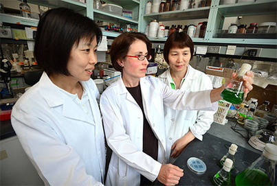 Synthetic Biology: Engineered Plants Create Their Own Fertilizer | Tracking the Future | Scoop.it