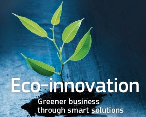 EU-funded SMEs Demonstrate Job Creation and Green Growth | ETICAMBIENTE® Sustainability Management & Communications Consulting | Sustainability Management | Scoop.it