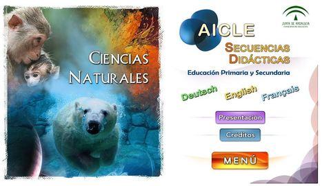 Acceso a los Contenidos AICLE (ciencias sociales) | Treball Final de Grau | Scoop.it