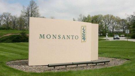 West Coast US Cities Sue Monsanto over Toxic Chemicals | Epicurist: In Victus Veritas | Scoop.it