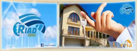 Vente_Inter Terrain Ksar El Hirane          Laghouat  (Lkeria 71436 ) | annonces immobilieres de www.lkeria.com | Scoop.it