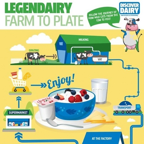 Home | Discover Dairy | Food Science and Technology | Scoop.it