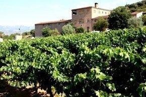 Las bodegas combaten el cambio climático con viñedos de altura | Sostenibilitat PSC | Scoop.it