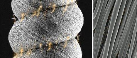 Nanofibras superam coletes à prova de balas   tecnologia s sustentabilidade   Scoop.it