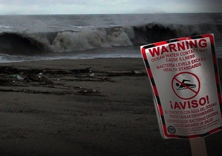 Tell EPA to Protect the Health of U.S. #Beachgoers  Please Sign.... | Now is the Time to Help our Oceans & it's Species ! | Scoop.it