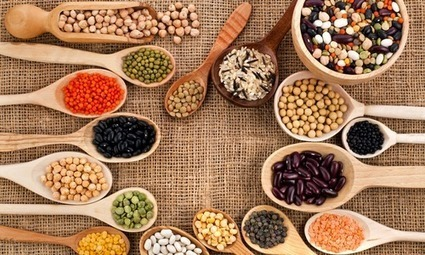 Se passer de viande : quelles sont les autres sources de protéines ? | Esthétique - santé - food - fashion | Scoop.it