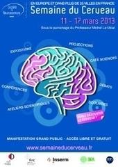 Les Français sensibilisés aux différentes fonctions du cerveau du 11 ... - CommentCaMarche.net | Neuroéducation | Scoop.it
