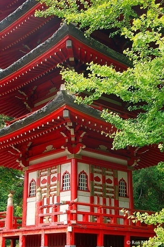 Cool stuff | A Love of Japanese Gardens | Scoop.it