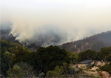 No Real Relief For California Drought. Next Up: Wildfires.   Sustain Our Earth   Scoop.it