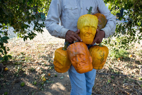 It's Alive! And It Grows Into a Jack-o'-Lantern | RegardsurlemondeTDC | Scoop.it