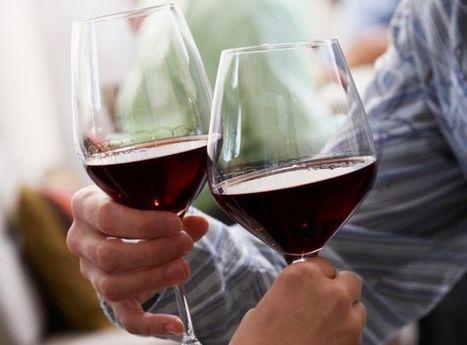 Vous n'y connaissez rien en vin ? Voici le bon plan ! - essentielle.be | Accords Mets & Vin - Wine & Food Pairings | Scoop.it