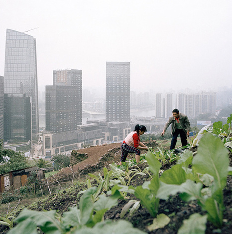 Photographs of Rapid Development of Chongqing   Lorraine's  Changing Places (Nations)   Scoop.it