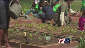 Getting the most out of your garden - Providence Eyewitness News | In the garden | Scoop.it