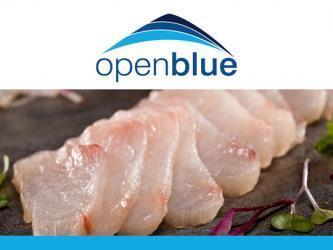 Open Blue cobia cook-off announced - Aquaculture Directory | Aquaculture Directory | Scoop.it