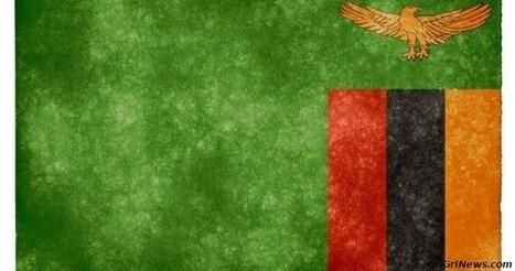✪ Envoi de cinq cent militaires zambien pour le maintien de la paix en Centrafrique...   Actualités Afrique   Scoop.it