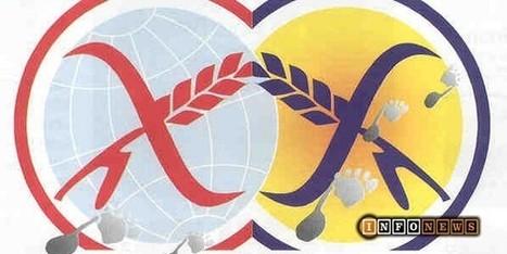 Trani News - Celiachia, un tema caldo in merito alla salute alimentare | celiachia network | Scoop.it