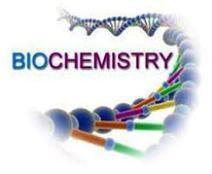 M Sc | Biochemistry | Distance Education | VMU | India | Distance Education Institute | Scoop.it