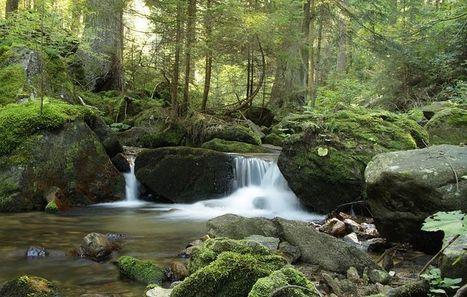 Natura e turismo | EcoTurismo | Ecosostenible | Scoop.it