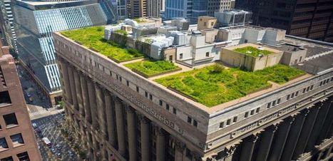 Copenhague, la segunda ciudad del mundo que hace obligatorio los tejados verdes. | Construcciones e infraestructuras rurales | Scoop.it