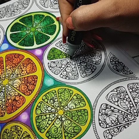 Chameleon Pens Create Over 100 Color Tones Using Only 20 Innovative Markers | Le It e Amo ✪ | Scoop.it
